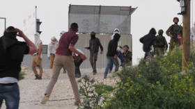Palestinian family attacked with stones as Israeli settlers storm village in West Bank (VIDEO)