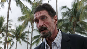 'Have you no shame?' John McAfee pillories 'fake' bitcoin creator Craig Wright