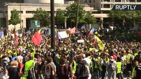 Yellow Vests hold protests in Paris for 23nd week in a row