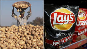 'Lay-off our spuds!' PepsiCo slammed for suing Indian farmers over potatoes