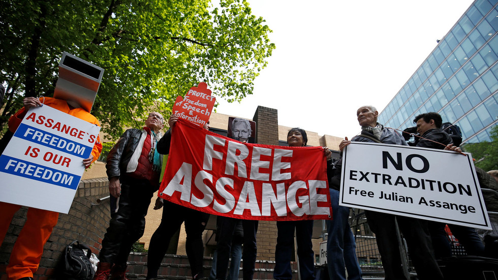 'A complete scandal': WikiLeaks supporters slam Assange's 50 week jail sentence for bail violation