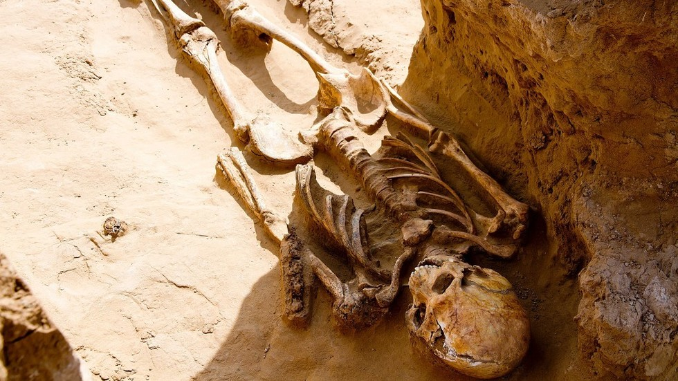 Farmer stumbles upon ancient burial site containing elite tribal remains in Russia (PHOTOS)