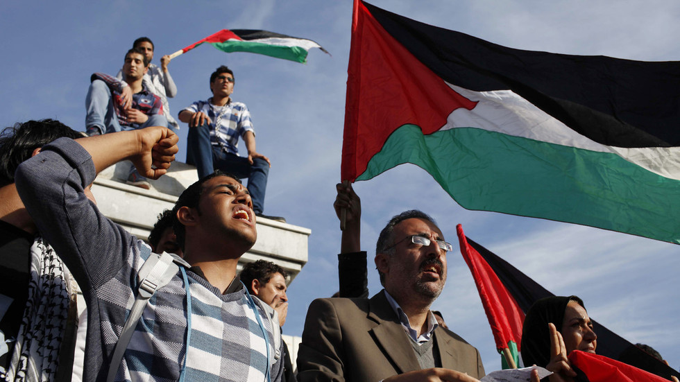 Palestine won't sell its 'land & rights' for Trump's skewed 'deal of the century' – ambassador