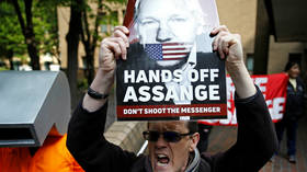 Assange's jail term 'excessive, extreme, unjustified' – analysts