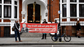 UN rights experts lambast Assange's 'disproportionate' prison sentence in UK