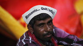 Seeds of conflict: How US companies became the enemies of traditional Indian agriculture