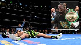 'He hit him so hard, they're feeling it in Brazil!' Wilder demolishes Breazeale in NY (VIDEO)