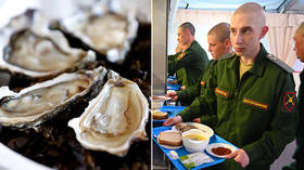 We don't serve oysters yet, but Russian troops are very well-fed – deputy DM
