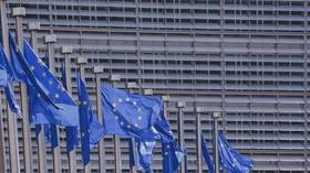 EU elections: Here's what you need to know