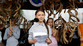 Teen climate change campaigner Greta Thunberg to take year off school for US trip