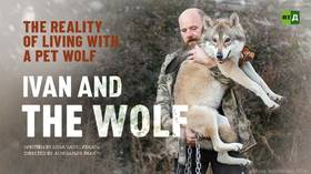 Ivan and the wolf
