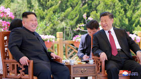 China's President Xi Jinping to visit N. Korea this week – state media