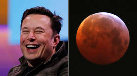 Musk ridiculed for tweeting picture of Moon with 'Occupy Mars' catch