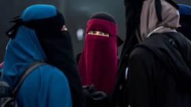 Fair comment or racism? Award-winning German artist under fire over 'Islamophobic' cartoons