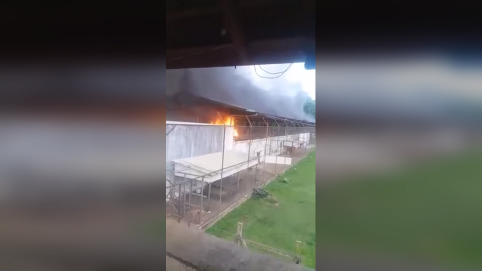 52 killed as prison gangs riot & DECAPITATE 16 rivals in Brazil