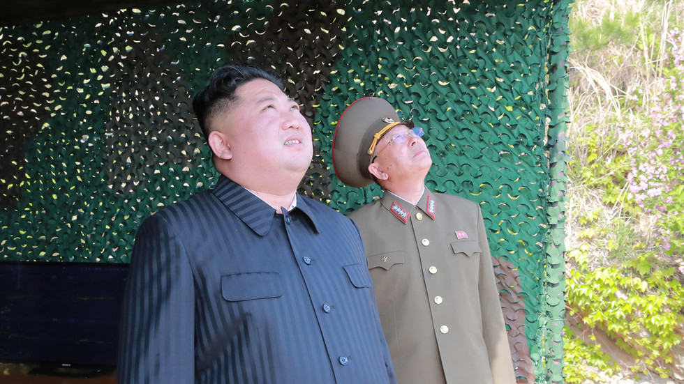 'Inescapable distress': Kim oversees launch of 'new guided rocket system' – state media