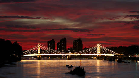 FILE PHOTO: Albert Bridge on the River Thames, London © Reuters / Mike Hutchings