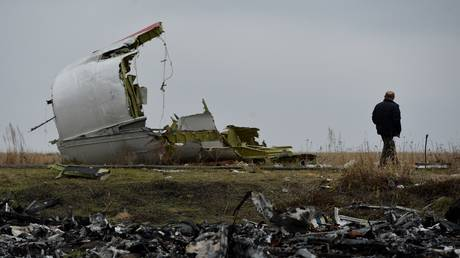 FILE PHOTO: MH17 flight crash site in eastern Ukraine.  © Sputnik / Alexey Kudenko