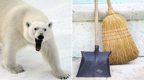 Fearless Moscow Zoo cleaner fends off polar bear with broom (VIDEO)