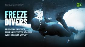 Freeze Divers