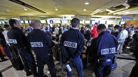 'Disgrace to French nation': Greek ex-finance minister scraps with police at Paris airport (VIDEO)