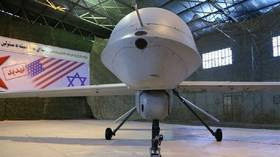 Schrodinger's Drone: US Commander says Americans 'may have' shot down another Iranian drone