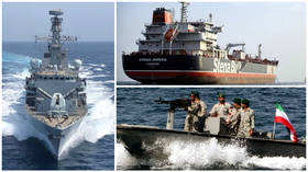 New audio reveals radio chatter between UK & Iran warships during Gulf standoff – media