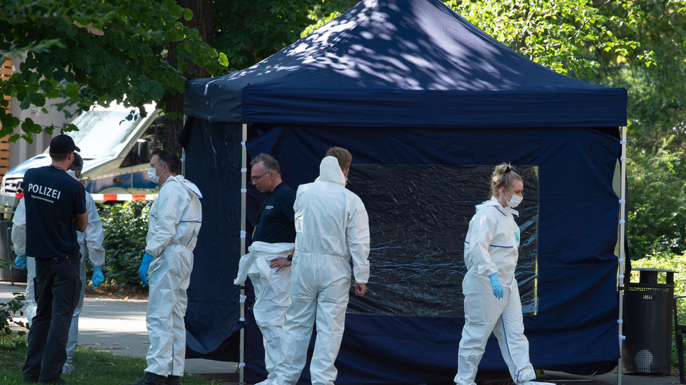 Inventing '2nd Skripal case'? Moscow rejects any link to asylum-seeker assassination in Germany