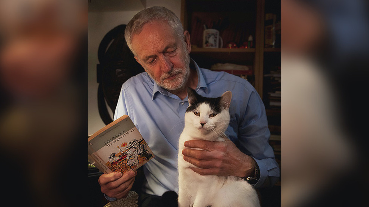 Corbyn Posts Photo With Beloved Cat El Gato To Mark Internationalcatday Rt Uk News
