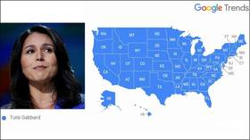 Tulsi most-Googled candidate during debate… raising questions over 'muted' Twitter trend