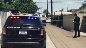 'Time to ban knives'? 4 killed, 2 injured in 'random' California stabbing spree (VIDEOS)