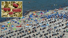 Killer bacteria leaves woman dead after beach trip in Germany