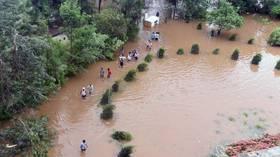 Indian elephants washed away by surging rivers as floods wreak havoc in Kerala (VIDEO)