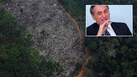 'Poop less, save the planet': Brazil's Bolsonaro dismisses worries over Amazon deforestation
