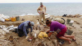 'Sensational': First ever ANCIENT male rhino skull found in Russia