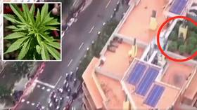 High crimes: Cannabis farm raided by police after being discovered on Vuelta a Espana aerial shots