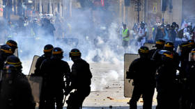 Paris police arrest 89 Yellow Vest protesters during 'Act 43'