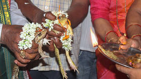 The power of love: Frogs divorced after bringing too much rain to drought-stricken Indian state