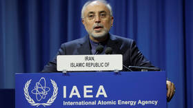 Iran using advanced centrifuges in violation of nuclear deal, says IAEA