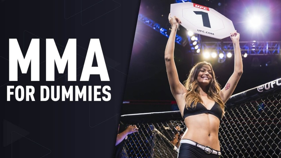 MMA terminology for dummies: Get clued up about the most spectacular sport in the world