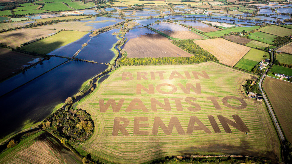 'Britain now wants to remain': Anti-Brexit campaigners' POWERFUL VIDEO set in English countryside goes viral