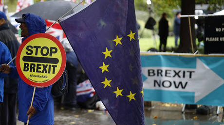 An anti-Brexiteer holds an EU flag near pro-Brexit banners outside the Houses of Parliament in Westminster © AFP / Tolga Akmen