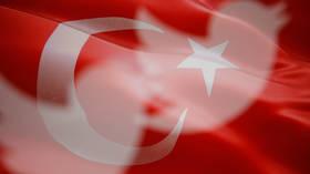 Freudian slip? Turkey fumes over 'meddling' after US embassy LIKES tweet by exiled 'terrorist-linked' journalist