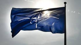 CrossTalk Bullhorns: NATO vs NATO