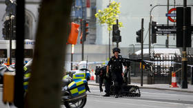 Bomb squad called in over suspicious package near UK parliament (PHOTO)