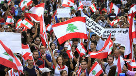 WATCH Lebanon protesters sing 'Baby Shark' to frightened child amid heated protests sparked by tax hikes (PHOTOS)