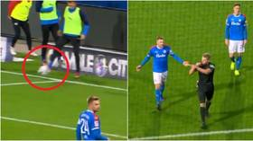 Karate-kicking keepers, touchline tear-ups and stupid substitutes: The 10 CRAZIEST moments of the Bundesliga season so far (VIDEO)