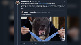 'Hard-hitting journalism': Reporter FACT-CHECKS blatantly photoshopped image of 'American hero dog' being honored by Trump