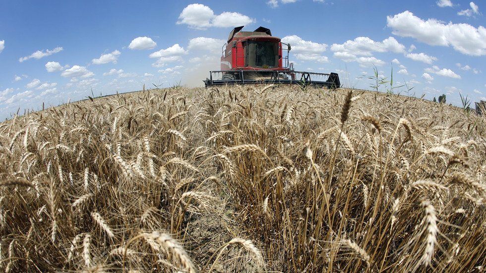 Sanctions + sanctions = trade: Syria to get 5,000 tons of grain from Russia's Crimea