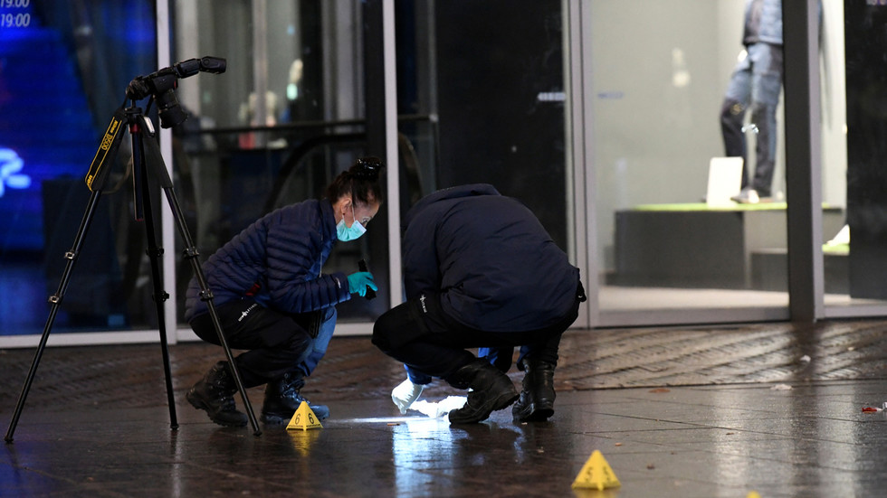 'No indication of terrorism'? The Hague stabbing victims all underage, suspect still at large & motive unclear